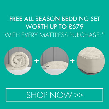 Chemical Free Beds and Mattresses