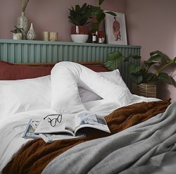 Arinta V-Shape Pillowcase - 200tc Organic Cotton