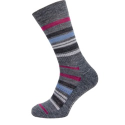 Mens Multi stripe grey base, rasberry  UK 7-11
