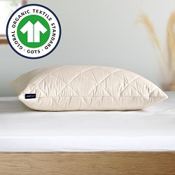 US Size Luxury Traceable Organic Pillow